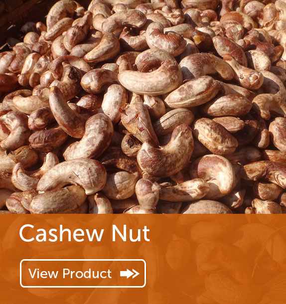Export of Cashew Nut in Nigeria & Ghana
