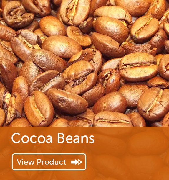 Export of Cocoa Beans in Nigeria & Ghana