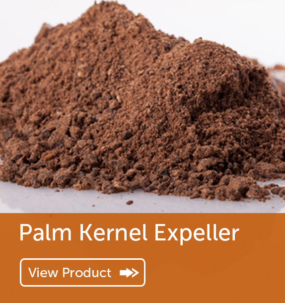 Export of Palm Kernel Expeller in Nigeria & Ghana