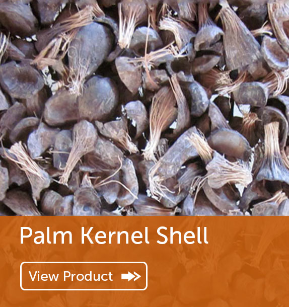 Export of Palm Kernel Shell in Nigeria & Ghana
