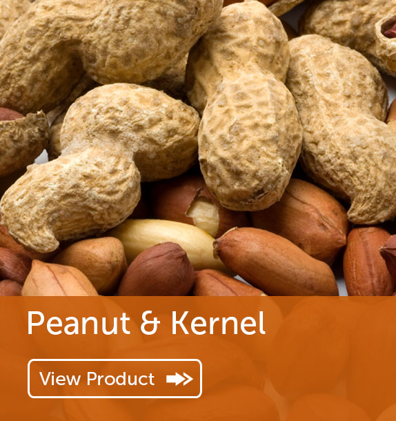 Export of Peanut & Kernel in Nigeria & Ghana