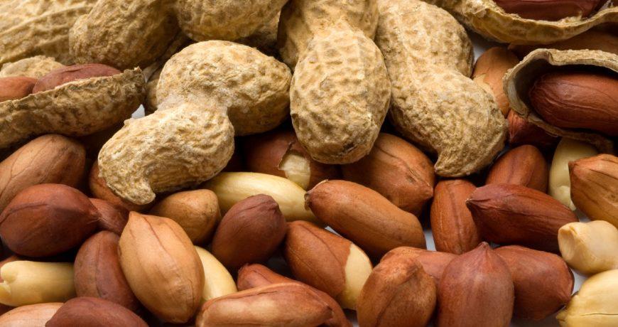 Peanut & Kernel